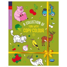 fun with colour copy 3 (Colouring Book)